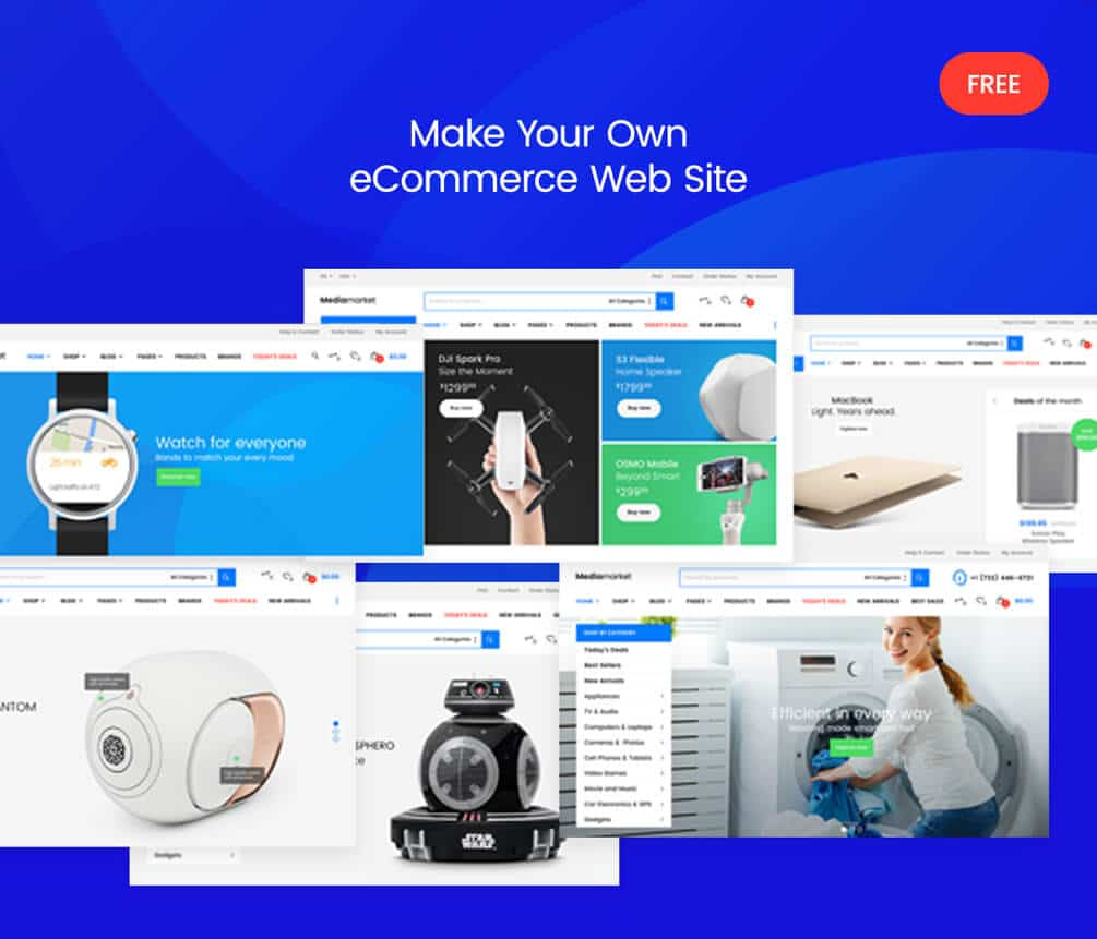 E-Commerce Website Designing Company in Meerut