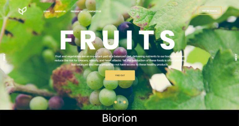 biorion-company-meerut-agency-delhi-ncr