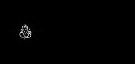 astro-finding-web-designing-agency-hardiwar-hapur-shamli-roorkee