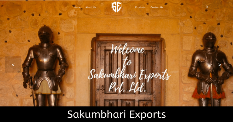 website-design-agency-static-dynamic-ecommerce-delhi-ghaziabad-1
